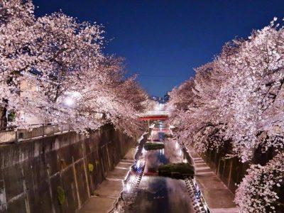 都心が持つ良さが凝縮された「中板橋」は、住まい探しの「超・穴場」である!